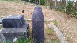 Lucy Etta Ettie L. <i>Wyman</i> Albee