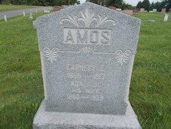 Adalaide Amos