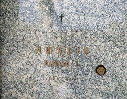 Raymond J Amrein