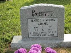 Jeanice <i>Newcomb</i> Adams