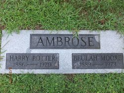 Harry P Ambrose