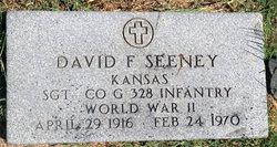 Sgt David F. Seeney