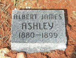 Albert James Ashley