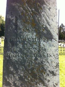 Thomas Hutchinson Botts