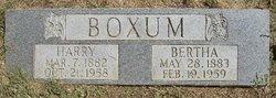Harry Boxum