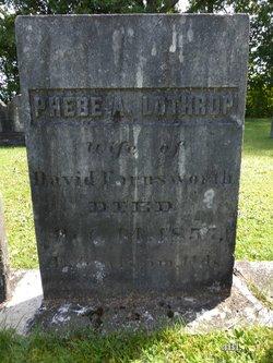 Phebe Ames <i>Lothrop</i> Farnsworth