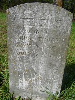 Louisa Jane <i>Moore</i> Thorp