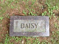 Daisy <i>Dobbin</i> Ayles
