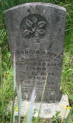 Georgia Anna Adams