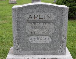 Alfred Walter Aplin