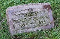 Wesley W. Skinner