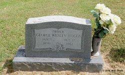 George Wesley Briggs
