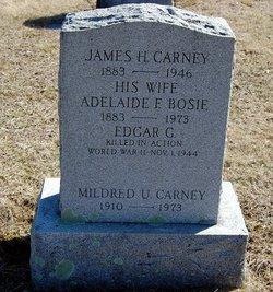 Adelaide F <i>Bosi</i> Carney