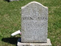 John Harrison Strausbaugh