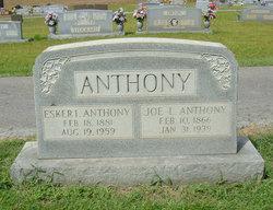 Joe Lee Anthony