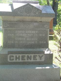 Catharine <i>Gue</i> Cheney