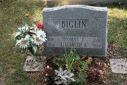Thomas J Biglin