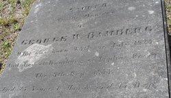 George Washington Bamberg
