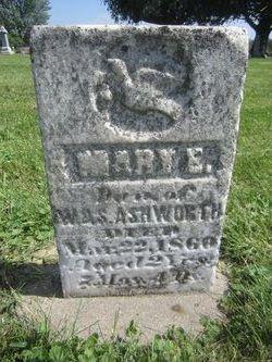 Mary Elizabeth Ashworth