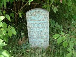 Thurlie Adams