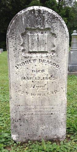 Andrew M. Dragoo