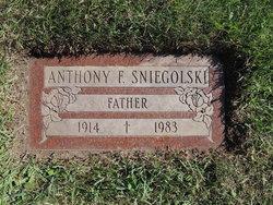 Anthony F Sniegolski