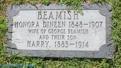 Honora <i>Dineen</i> Beamish
