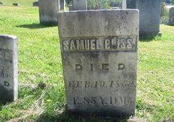 Samuel Phelps Bliss