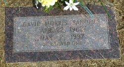 David Morris Sanders