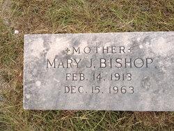 Mary J Bishop