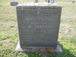 Sarah Jane Amerine