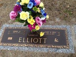 Judy Ann <i>Hill</i> Elliott