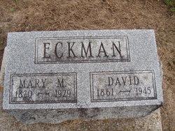 David Eckman