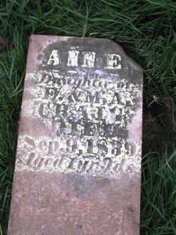 Ann E Craig