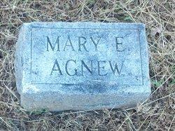 Mary E Agnew