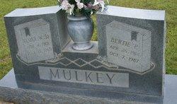 Elmer William Mulkey, Sr