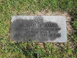 Michael F. Bauer