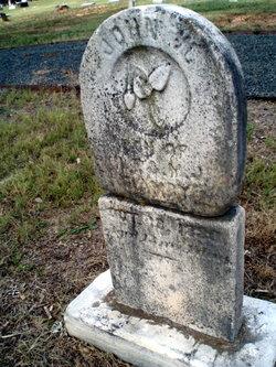 John W Bohannon