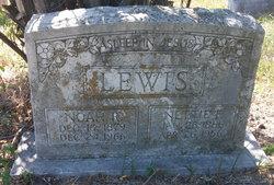 Rev Noah Randle Lewis