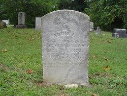Addie L. <i>Buckles</i> Blevins