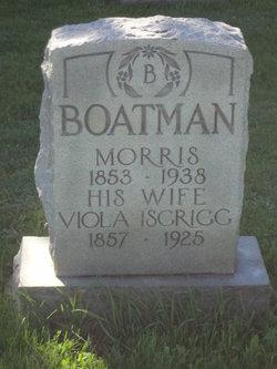 Viola <i>Isgrigg</i> Boatman