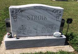 Alice T Stroik