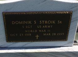 Dominik S Stroik, Sr