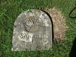 Sarah Howard <i>Trundle</i> Bouic