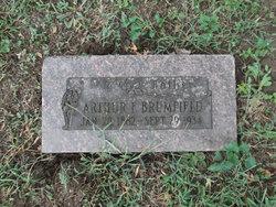 Arthur F Brumfield