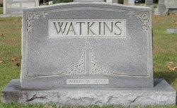 Carrie Lorene <i>Webster</i> Watkins