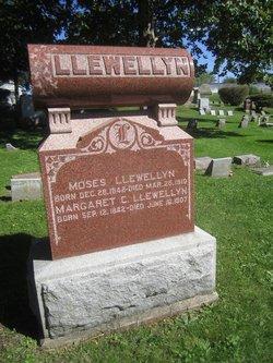 Margaret S Llewellyn