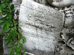 Allen Seymour Chamberlin