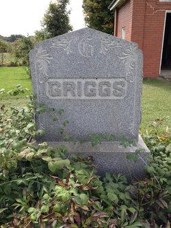 Albert N Griggs