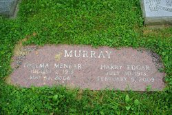 Harry Edgar Murray